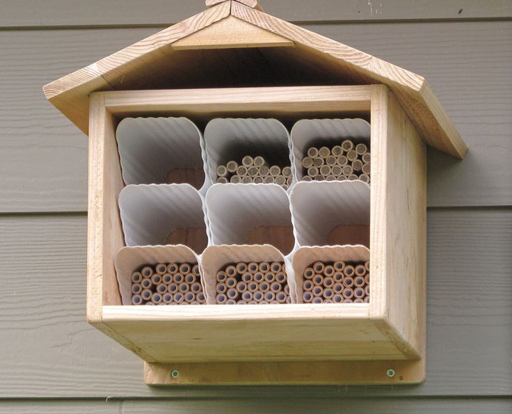 Mason bee house (you can make your own) for good pollinating bees