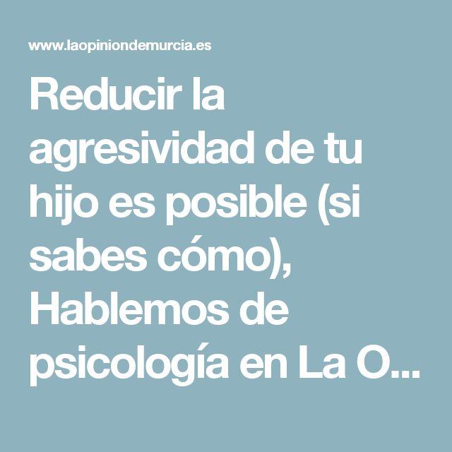 Reducir la agresividad de tu hijo es posible (si sabes cómo), Hablemos de psicología en La Opinion de Murcia