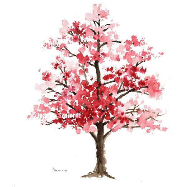 Cherry blossom Original watercolor painting, The Cherry bloossom Tree,... (€61) ❤ liked on Polyvore featuring home, home decor, wall art, backgrounds, fillers, trees, flowers, art, pink flower tree and blossom tree