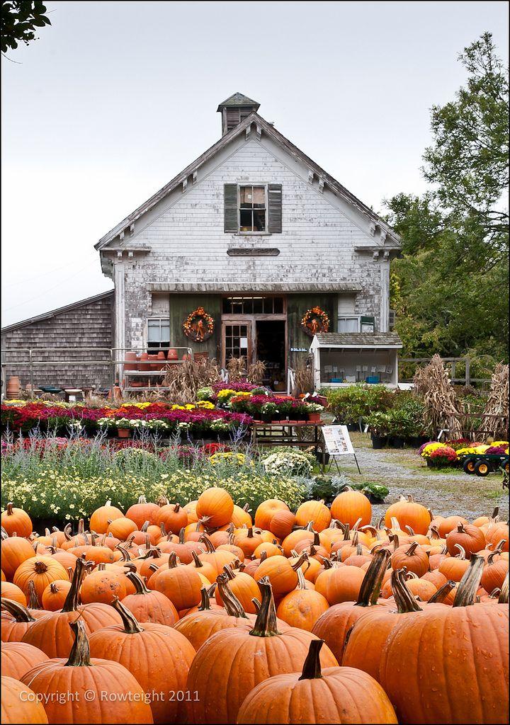 Tobey Farm Shop, New Boston, Dennis, Massachusetts