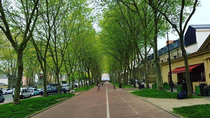 Link in bio#thatchillaxdude  There's a nice lil tunnel of trees from the train station to the Château if you go via Starbucks... #followyourarrow #travel  #wandern #travelbug #travelgram #wanderlust #notallwhowanderarelost #solotravel#instalike #instatravel #instatraveling #photography #tourism #travelblogger #passportready #worldtravel #wander #natgeo #nationalgeographic #explore #buencamino #europe  #love #smile #france #paris #parisisalwaysagoodidea #springtime #versailles