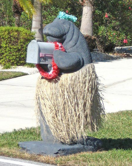 Miss Manatee! She is quite the beauty and almost looks like she's doing a little dance with the high winds of the day blowing her grass skirt! I've seen manatee mailboxes before, since we're in Florida, but this one is just heads and tails over the rest!