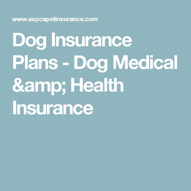 Dog Insurance Plans - Dog Medical & Health Insurance