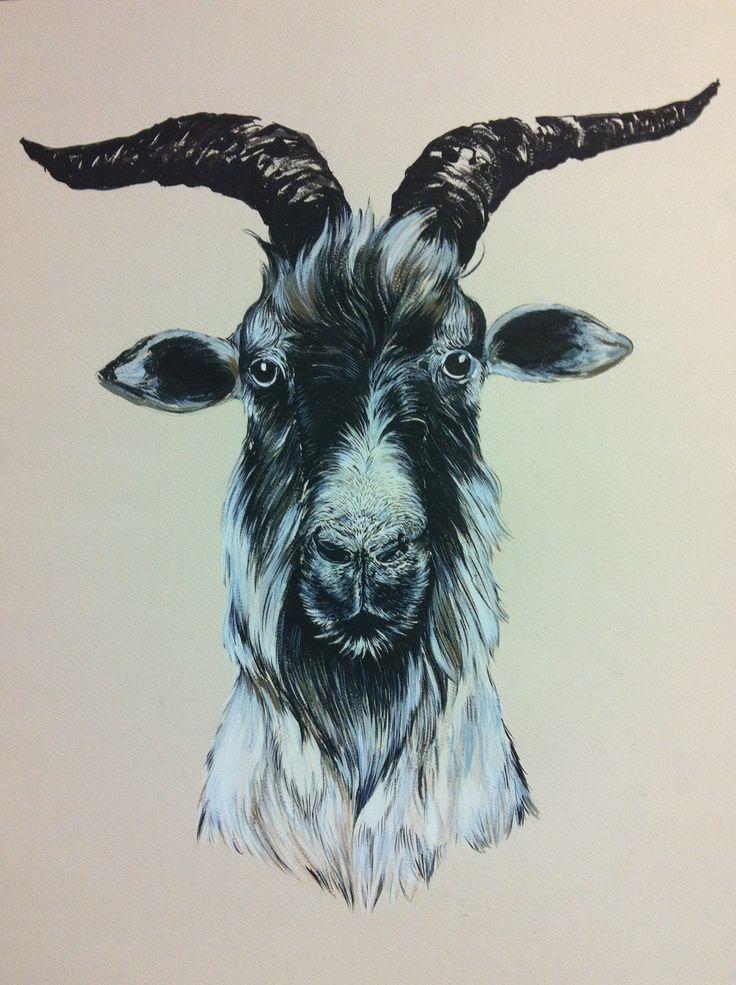 Billy Goat, 2012