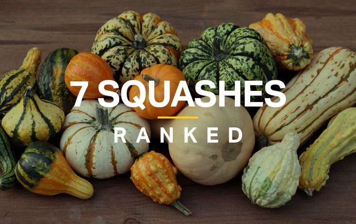 This is the ideal time of year to explore the many delicious benefits of squash. These low-carb, low-calorie gourds have natural sweetness and great ...