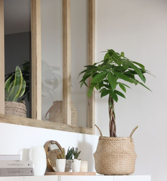 white, wooden details and urban jungle. my world in a frame ⎟@ilariafatone