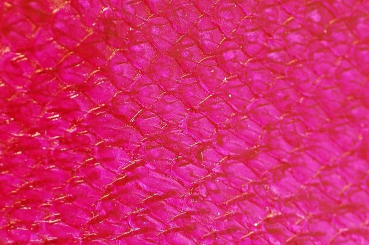 Fish leather: salmon