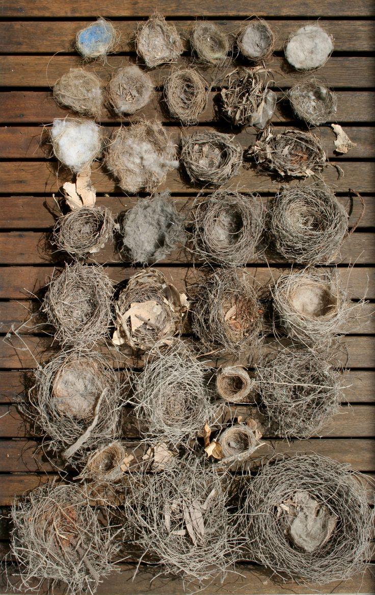 collection of nest' s -http://hellejorgensen.typepad.com/gooseflesh/2009/03/todays-treasures.html