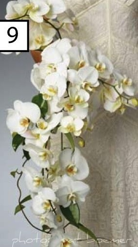 Contemporary cascade bouquet of phalaenopsis orchids by @Rene' Balleras-Lampley' Balleras-Lampley van Rems AIFD #bridal bouquet book #floral wedding design book #orchid bouquet #wedding bouquet