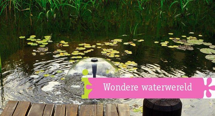Alles over tuinen, decoratie en inspiratie!  Bij Woonboulevard Heerlen vindt u een groot aantal meubelzaken, keukenshowrooms, badkamerspeciaalzaken, woonwarenhuizen en bouwmarkten dicht bij elkaar. Met 4000 gratis parkeerplaatsen wordt een bezoek u gemakkelijk gemaakt.
