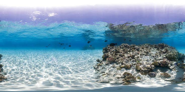 Osprey Reef - Coral Sea をチェック #StreetView アプリで共有
