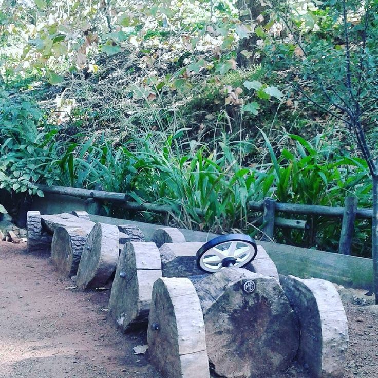 What a delightful hidden away mysterious park with wooden delights hidden in the middle of Cape Town suburbia #WoodYouBelieveIt #LiesbeekRiverGarden #Nature #WifeHappyPlace