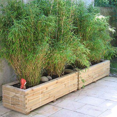 Luxury Details zu HOQ Pflanzkasten xx rechteckig Pflanztrog Pflanzk bel aus Holz montiert GartenanlageGarten TerrassePflanzkasten HolzSichtschutz