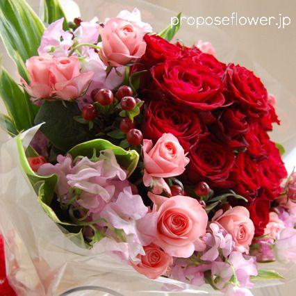 #rose #roses#redrose#薔薇花束 #赤い薔薇#赤いバラ花束