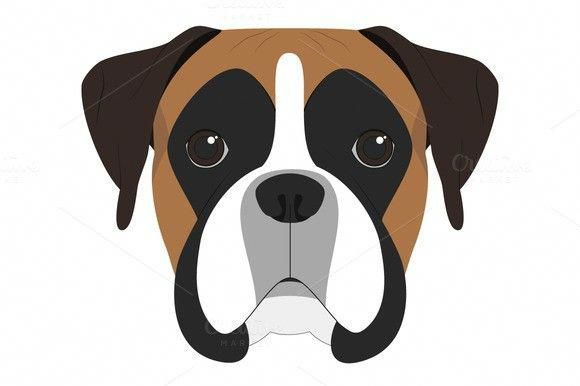 Boxer Dog Vector Illustration Con Imagenes Dibujos Faciles De