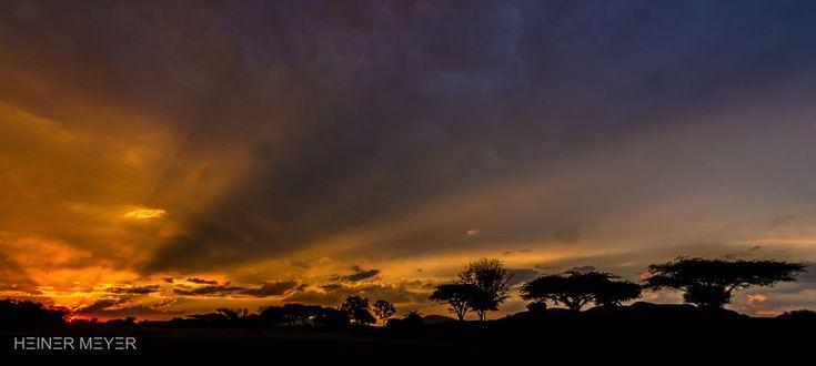 HΞINΞR MΞYΞR (@HeinerMeyer) | Twitter South Africa has it's own unique sunsets
