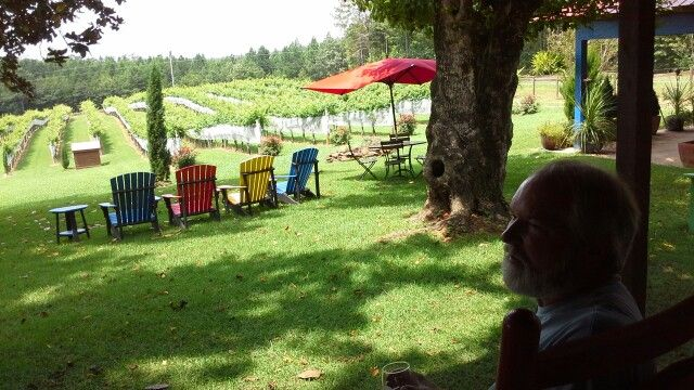 Tasting at Overview Mountain vineyard, Tryon, NC