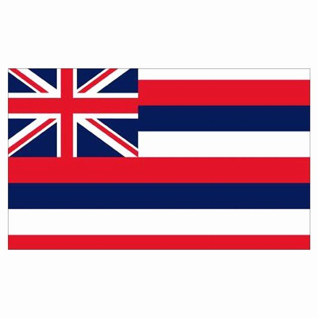Hawaii Flag Coloring Page In 2020 Flag Coloring Pages Hawaii Flag Flag
