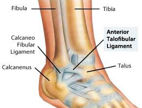 Anterior talofibular ligament between lateral maleolus