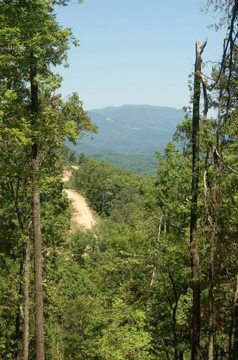 Take a Ride on the Wild Side at These Smoky Mountain Attractions:  If you are looking for an adventurous thrill, choose one of these Smoky Mountain attractions during your vacation! - Follow the link to read more about wild attractions in the Smoky Mountains!   www.parksidecabinrentals.com