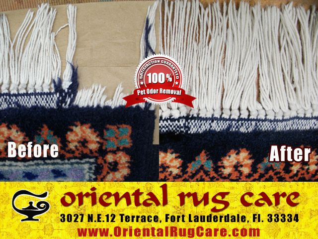 Process of Area Rug Cleaning in Florida