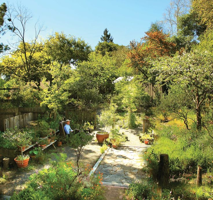 Designed To Mimic Nature, A Native California Garden Waxes And Wanes With  The Changing Of The Seasons. Data Pin Dou003d   Pinterest   Gardens, Trees And  Seasons