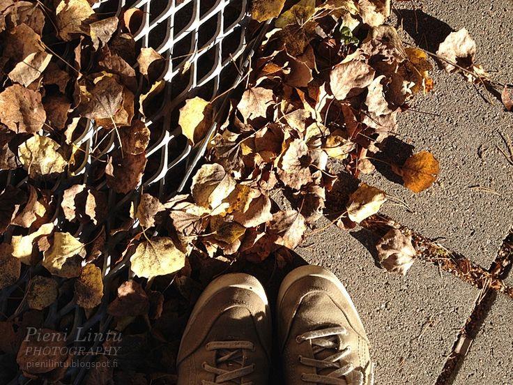 http://pienilintu.blogspot.fi/2014/10/oh-october.html