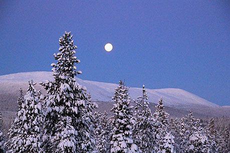 Luontoon.fi (luontoretkikohteita)