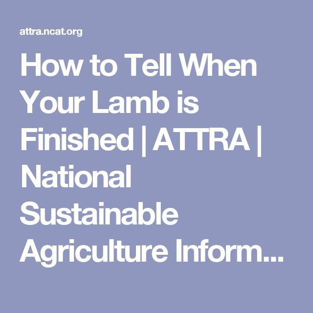 How to Tell When Your Lamb is Finished | ATTRA | National Sustainable Agriculture Information Service