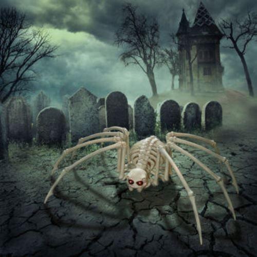 Skeleton Spider Led Eyes Timer Halloween Prop Creepy