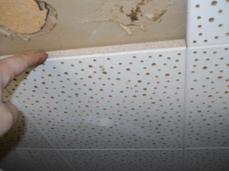 Images of asbestos ceiling tiles asbestos pinterest for How to cover asbestos floor tiles