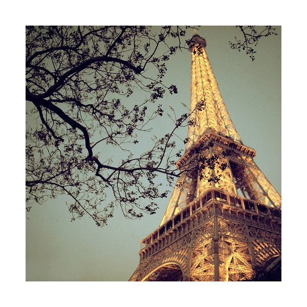 tumblr.pics - Tumblrで人気の画像まとめ found on Polyvore featuring backgrounds, pictures, paris, photos, pics and filler
