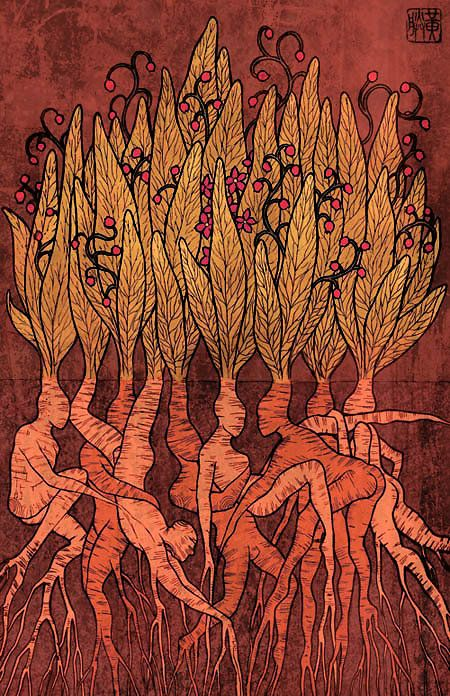 Mandrake Roots - just awesome! Find Ancient Allies on FB: www.facebook.com/AncientAllies Find Ancient Allies on the web:  www.AncientAllies.com