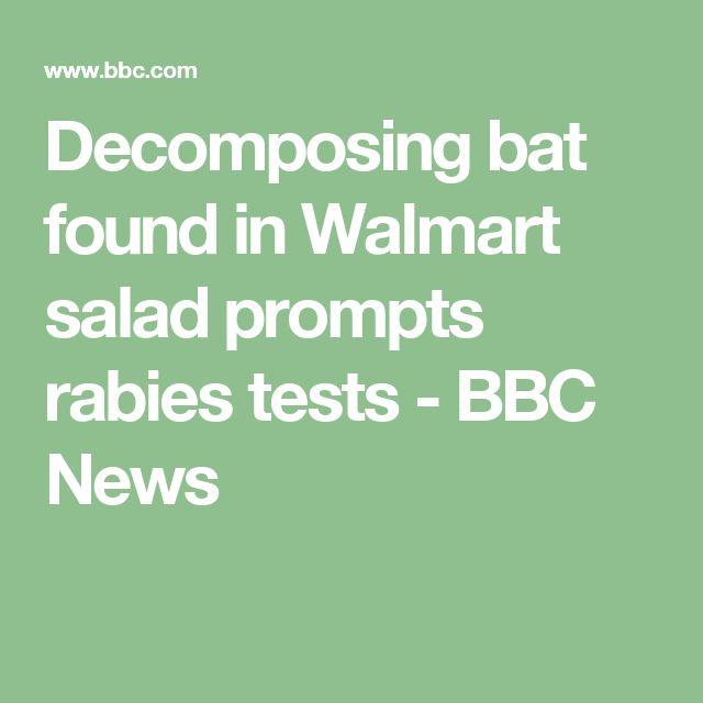 Decomposing bat found in Walmart salad prompts rabies tests - BBC News