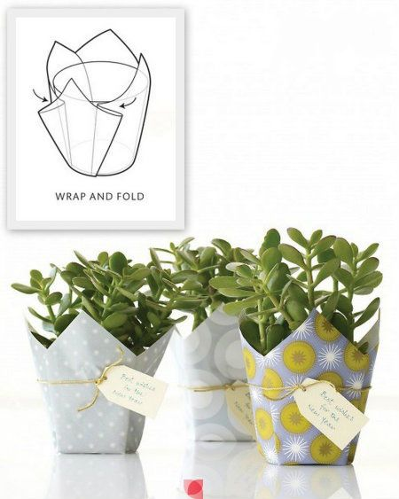 so simple wraps for plant gifts