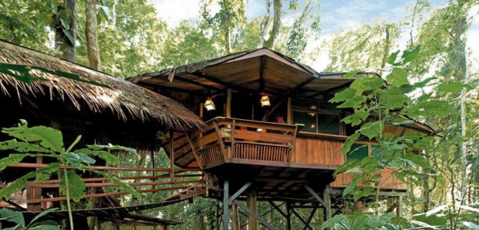 Tree House Eco Lodge in Costa Rica  www.costaricatreehouse.com  fees help fund endangered iguana preservation