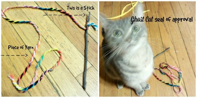 92 best cat images on pinterest cat stuff kittens and for Diy easy cat toys