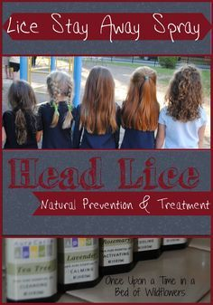 Natural Lice Prevention -- Lice Stay Away Spray via Once Upon a Time in a Bed of Wildflowers