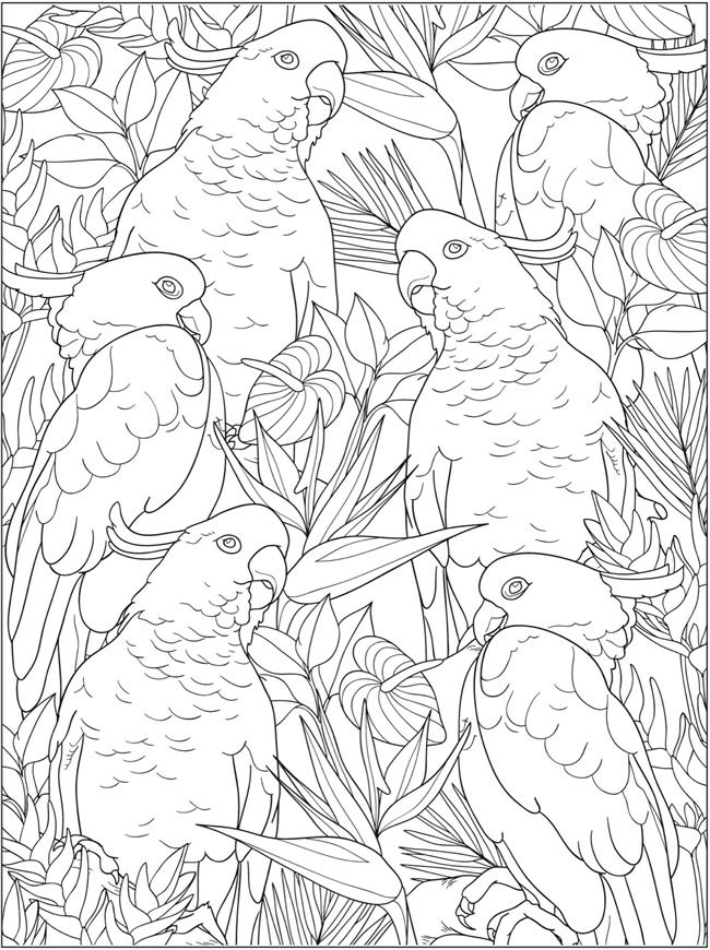 Welcome To Dover Publications Coloring Books Coloring Letters