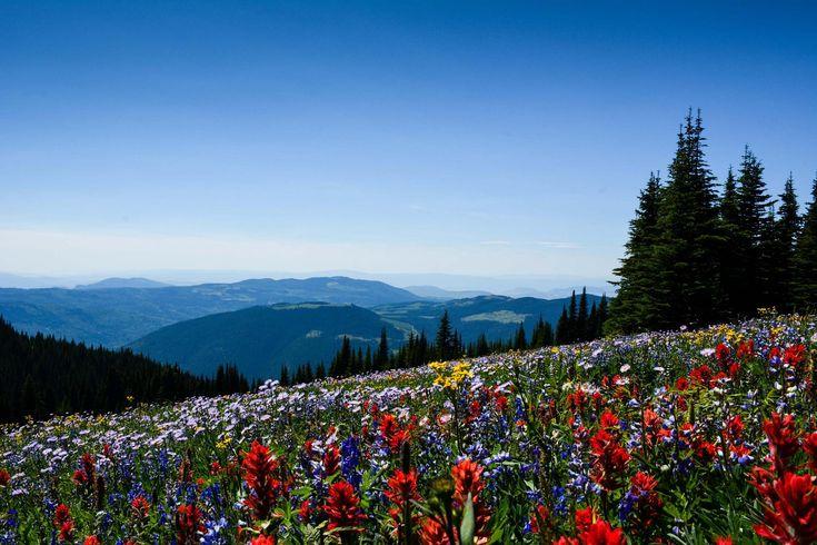 Summer Events at Sun Peaks Resort