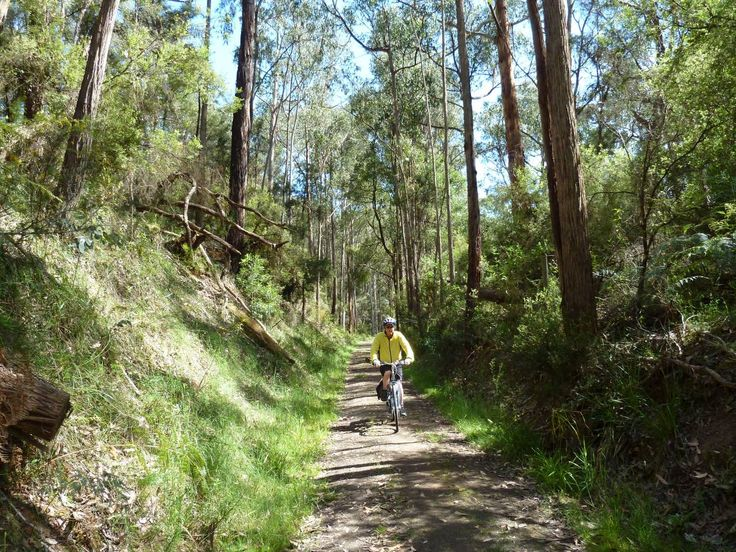 Old Beechy Rail Trail - Western Victoria, Australia. Colac to Beech Forest, 46km. MTB only.