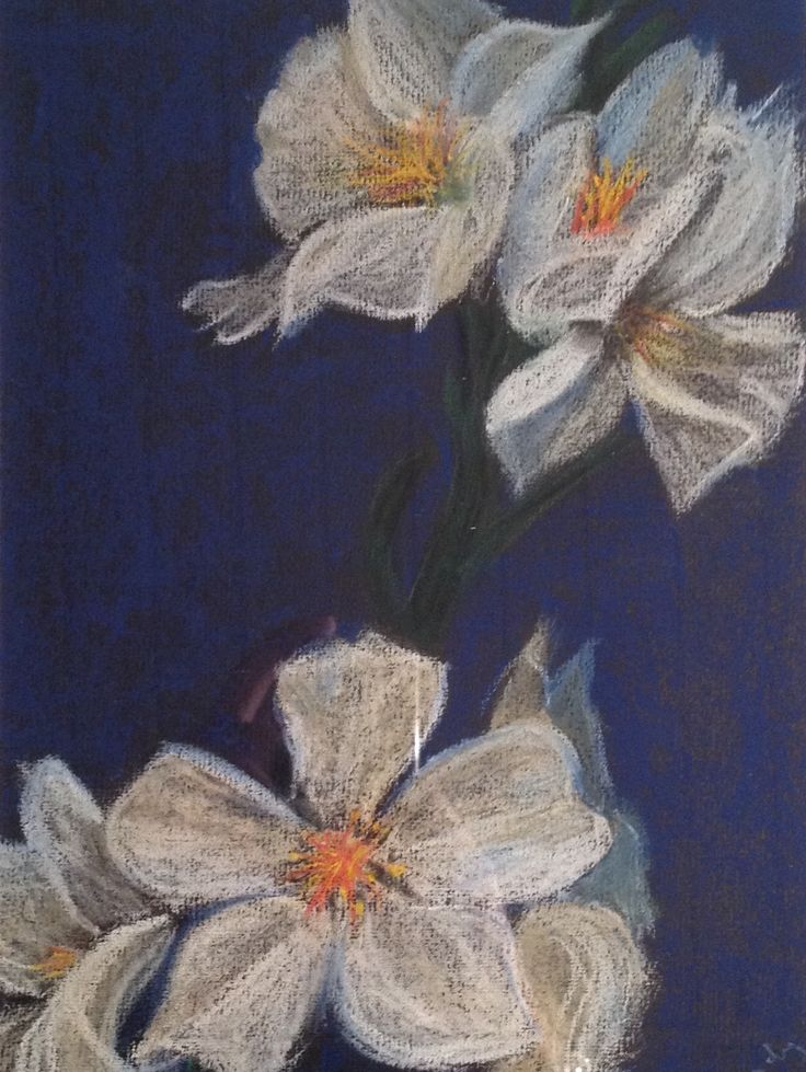 Almond Blossoms. Soft pastel on Canson paper, 24x30 cm. Sandy Rosenvinge Lundbye.