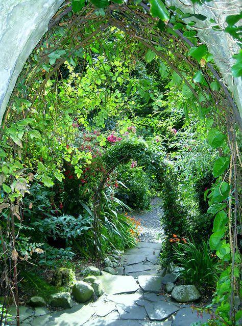 Lush entry to a hidden garden