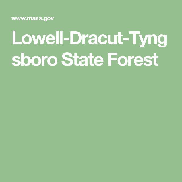 Lowell-Dracut-Tyngsboro State Forest