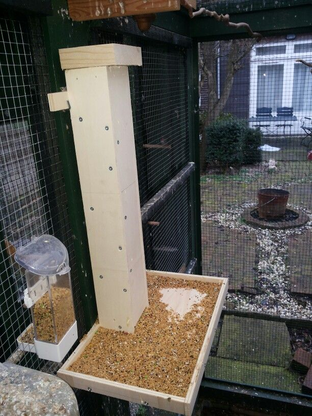 """And my birds told apon me: """"feed us for a week!""""  So I did."""