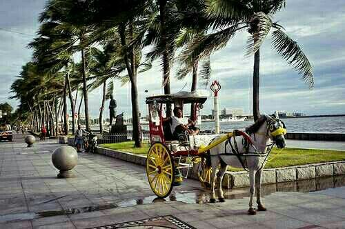 #manila from sydney for $625 with @flypal. For more visit www.flightfinderau.com travel