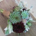 bouquet grasse1 150x150 Con le piante grasse facciamoci il bouquet da sposa