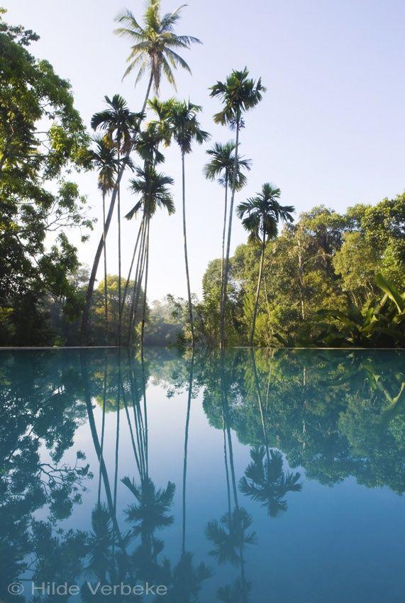 Voyage au Sri Lanka : The Kandy House Sri Lanka
