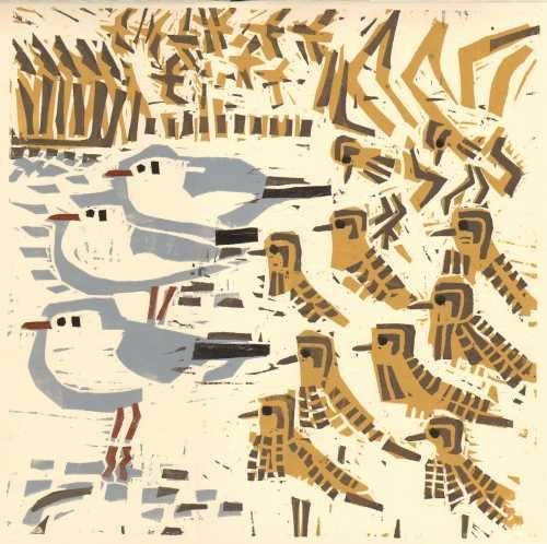 golden plover & black-headed gulls by British artist Greg Poole