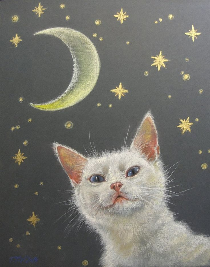 Lifelike Cat portrait. Pastel drawing on request.  Custom pet portrait by CanisArtStudio #cat #petportrait